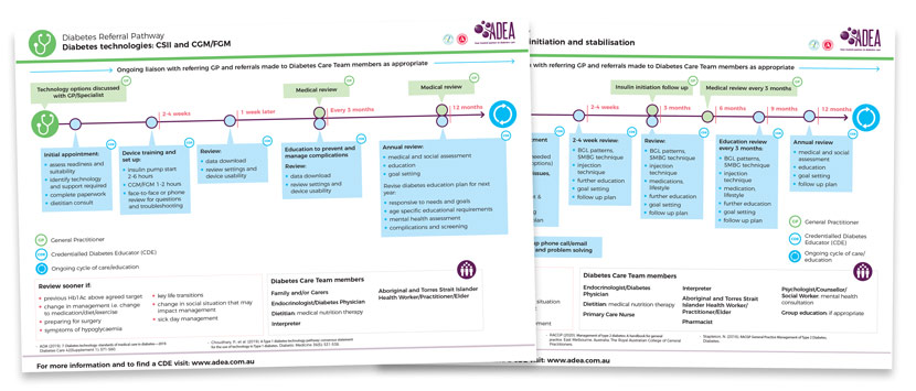 Diabetes Referral Pathways: download the PDFs to always have them at hand when you need them